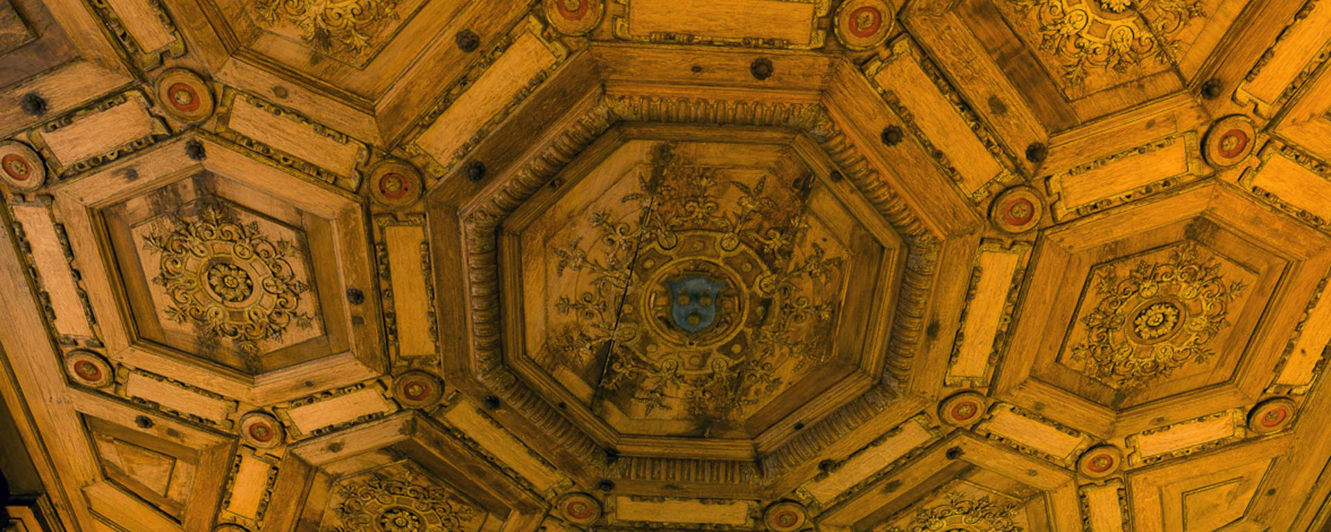 Ceiling of the Château de Beauregard
