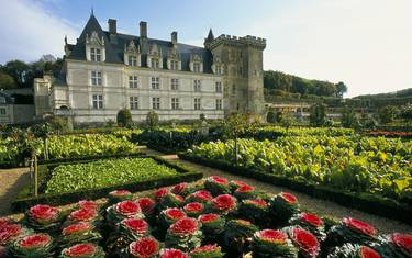 The château and gardens of Villandry. © Catherine Bibollet