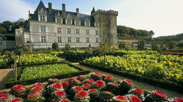 The gardens of Villandry. © Catherine Bibollet