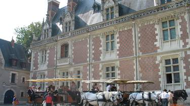 Horse carriage in front of Blois Castle. © OTBC