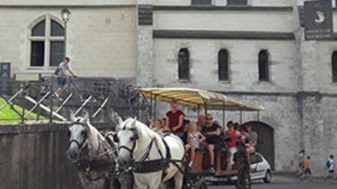 Horse carriage in Blois