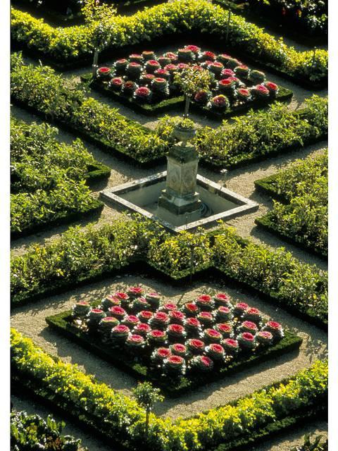 The gardens of Villandry © Catherine Bibollet