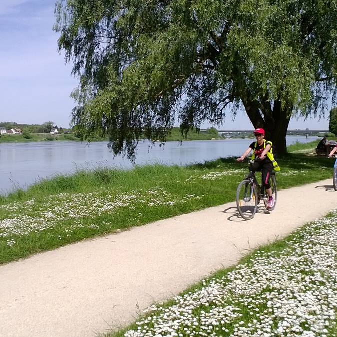 Cycle path in the Loire Valley