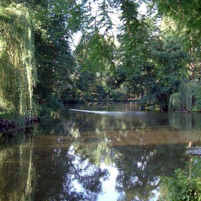 The river Beuvron