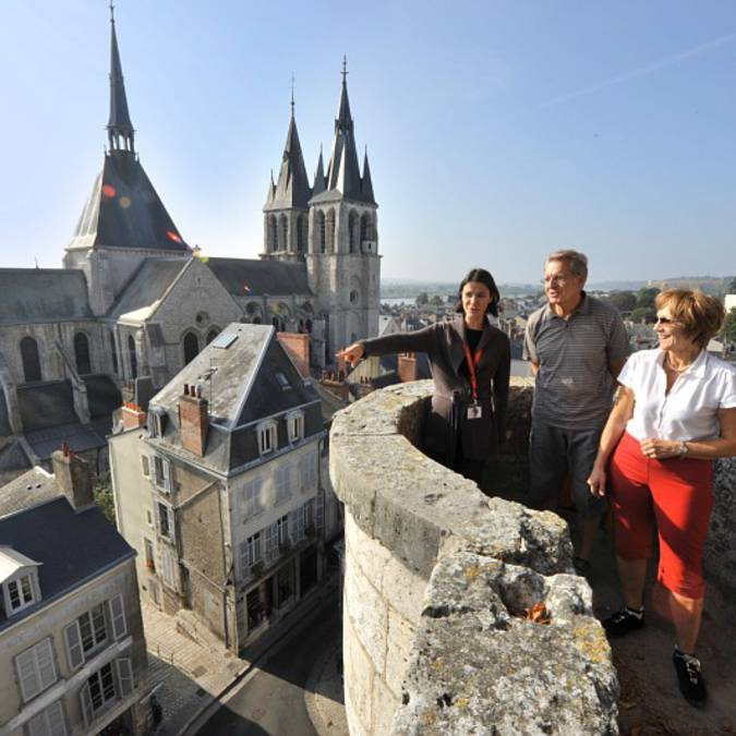 Walks and visit on the heights of Blois. © OTBC